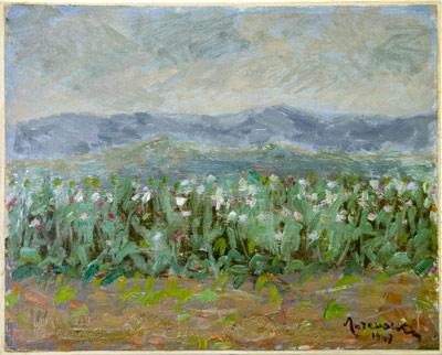 """Уметничка слика –""""Поле со афиони""""- современа уметност, автор Лазар Личеноски"""