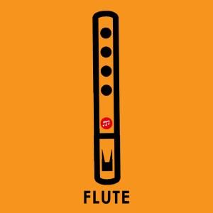 Flute Hobby Beginner