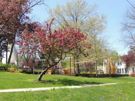 Photo of Memorial Park-2020
