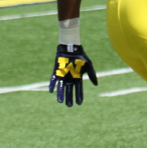 Michigan 'M' Glove
