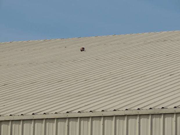 Ball on Osterbaan Field House roof - MVictors.com
