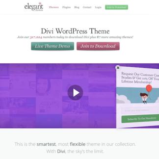 Elegant Themes: Divi WordPress Theme