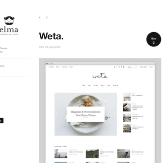 Elmastudio: Weta WordPress Theme