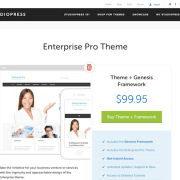 StudioPress: Enterprise Pro Theme