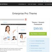 StudioPress: Enterprise Pro Theme