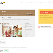 Themify: Minblr WordPress Theme