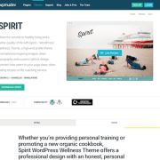 WPMU DEV: Spirit WordPress Theme