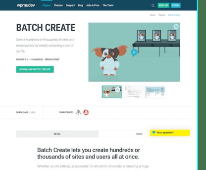 WPMU DEV: Batch Create WordPress Plugin