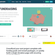 WPMU DEV: Fundraising WordPress Plugin