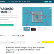 WPMU DEV: Password Protect WordPress Plugin
