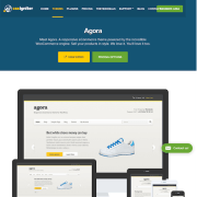 CSS Igniter: Agora WordPress Theme
