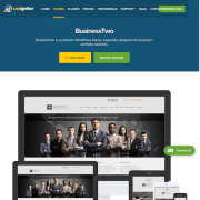 CSS Igniter: Businesstwo WordPress Theme