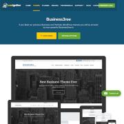 CSS Igniter: Business3ree WordPress Theme