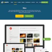 CSS Igniter: Nico WordPress Theme