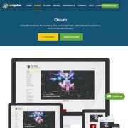 CSS Igniter: Oxium WordPress Theme
