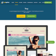 CSS Igniter: Troy WordPress Theme