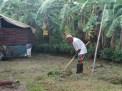 Joe working in the garden