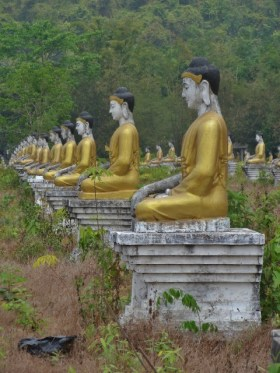 Field of Buddhas