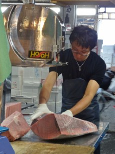Cutting Frozen Tuna with a Bandsaw
