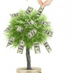 Hand take bill from money tree isolated on white