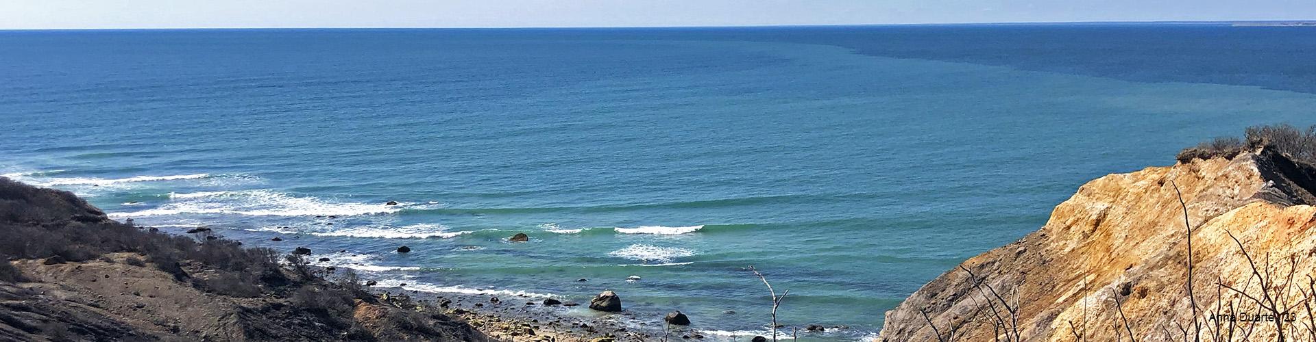 Anna Duarte – Ocean View
