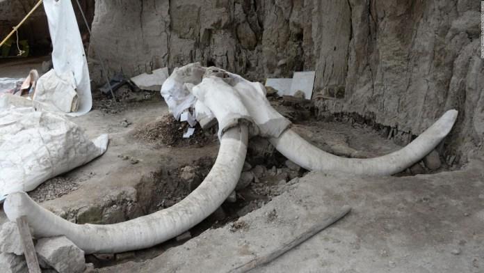 191107124448-mamut-mexico-full-169