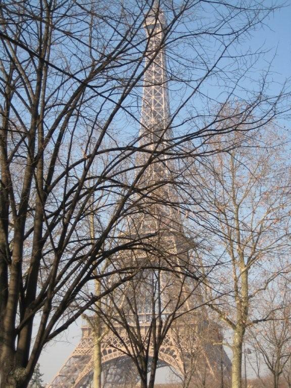 Eiffel in theTrees