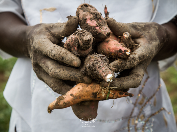 Kenya_Farmer-10