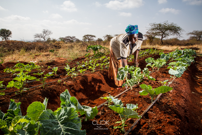 Kenya_Farmer-2