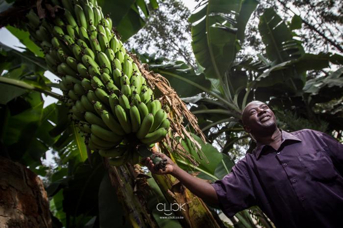 Kenya_Farmer-21