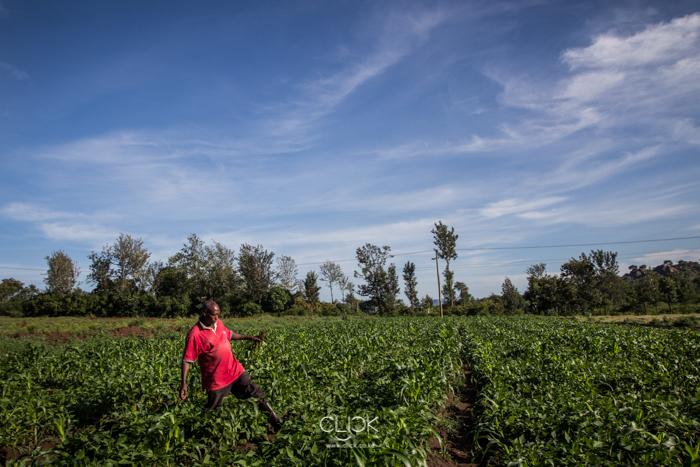 Kenya_Farmer-24