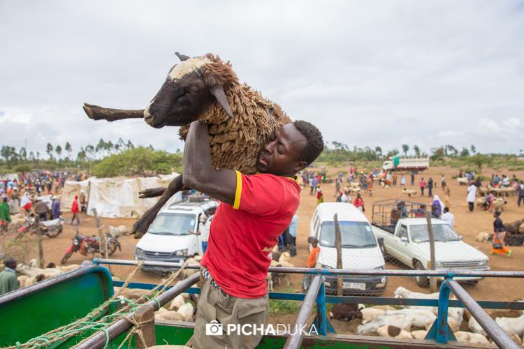 Rumuruti Livestock Market