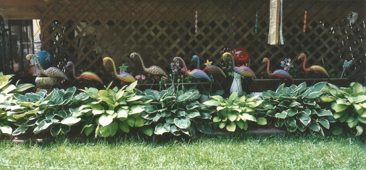 hosta border and statues
