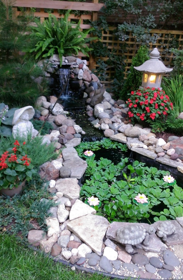 waterfall and pond with water lilies
