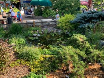 MWGS Garden at MN State Fair