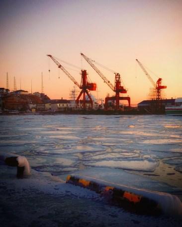 海も凍る寒さ(2015年)