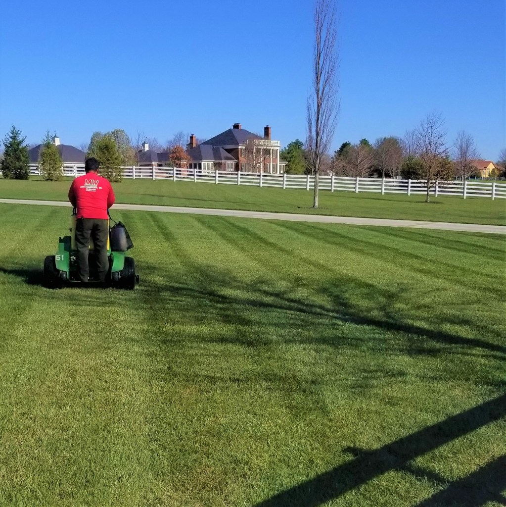 Lawn Services Mowing Green Grass