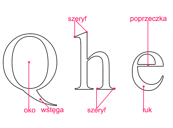 Oko, wstęga, szeryf, poprzeczka, łuk - Liternictwo i typografia