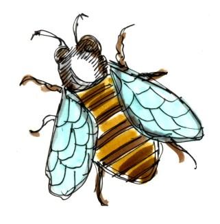 M WOOD NATURE SKETCH BEE