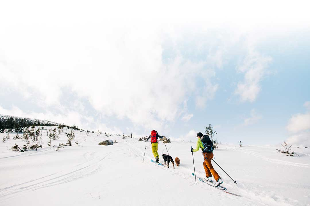 backcountry skiers climbing up Baldface