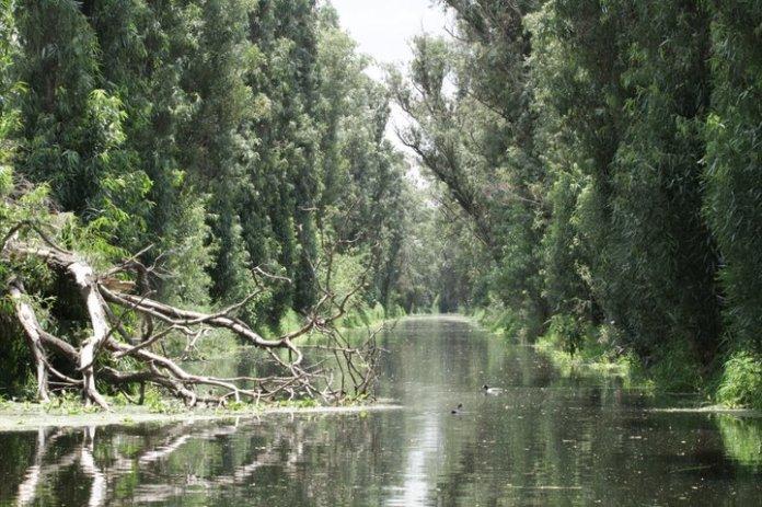 lugares alternativos imprescindibles lagunas tlahuac