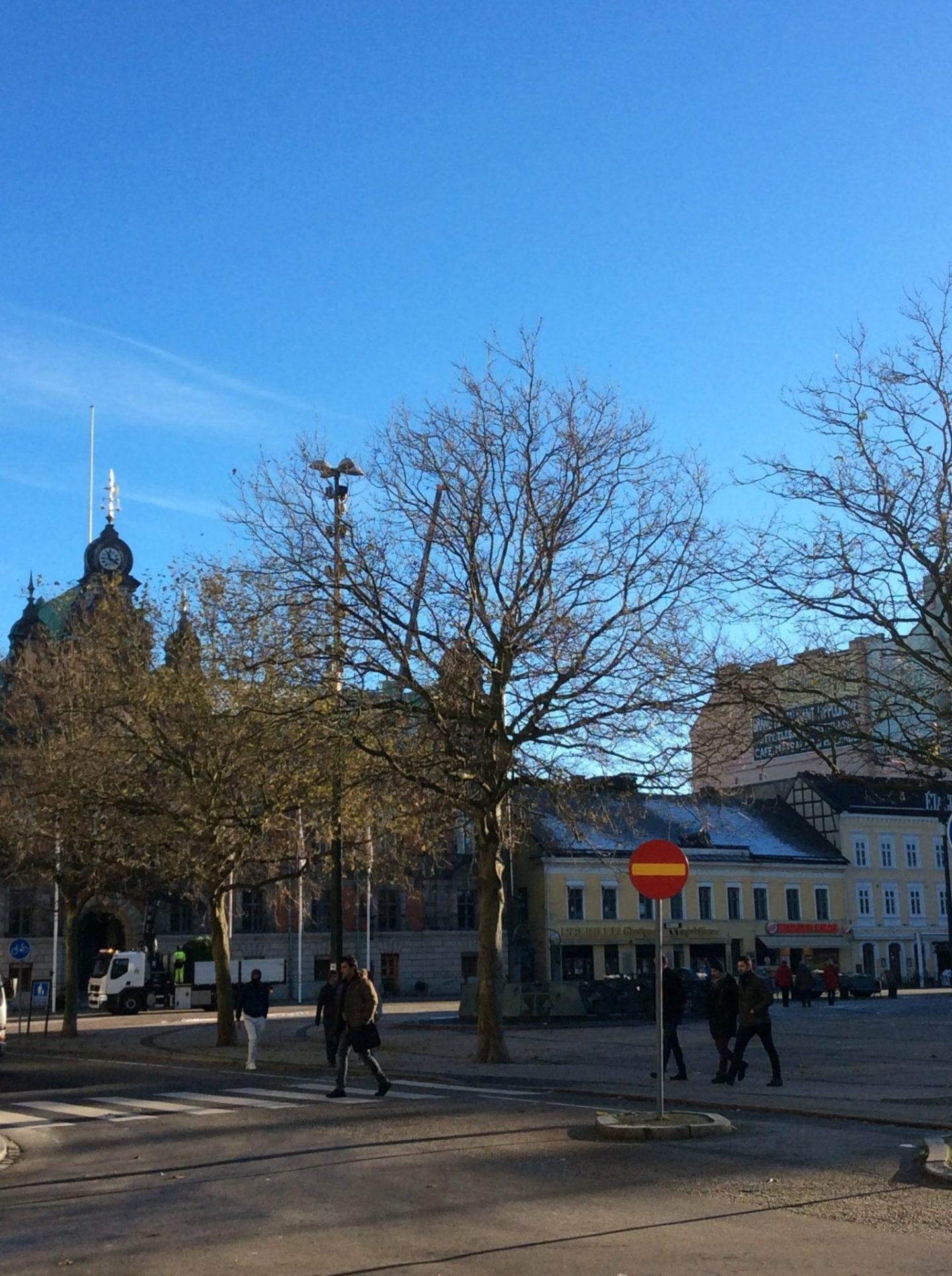 IMG 0118 1440x1928 - Malmö and the history