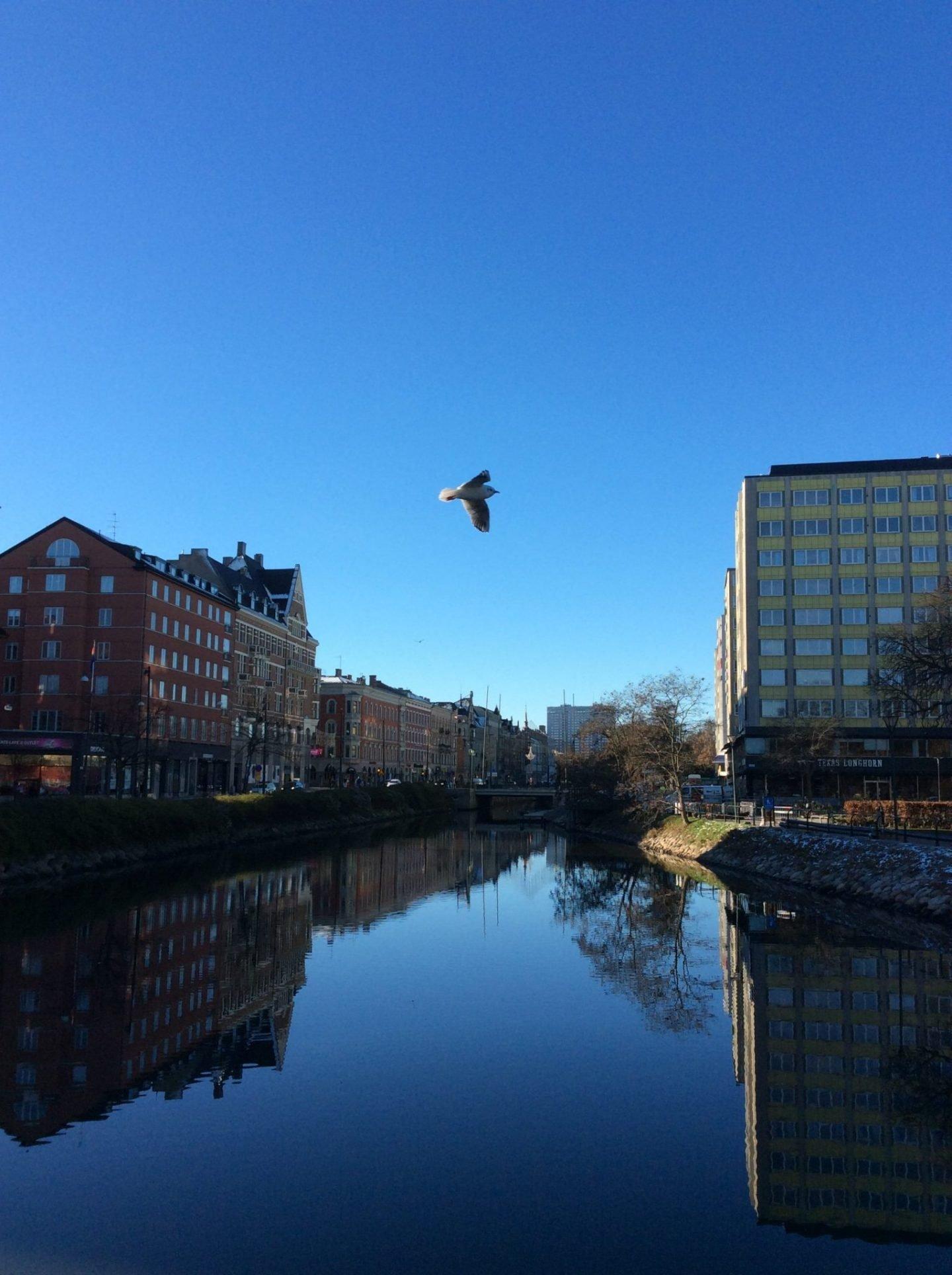IMG 0133 1440x1928 - Malmö: a modern city