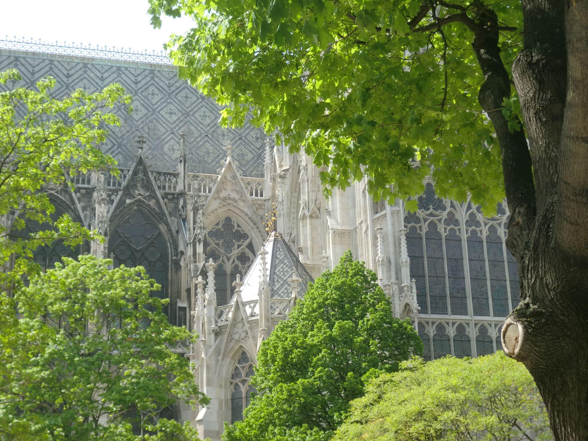 Vienna cathedral 57 1440x1080 - Vienna: elegant beauty