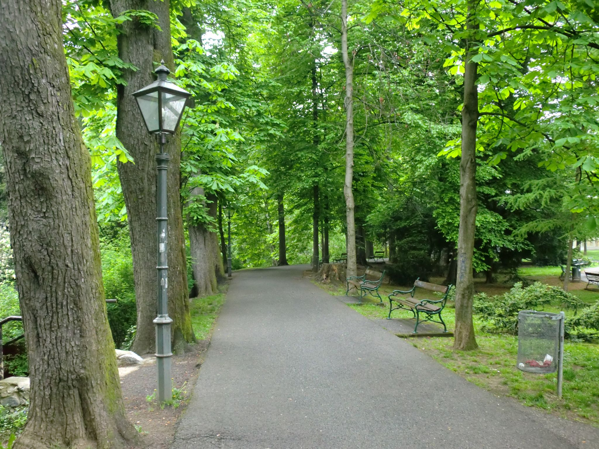 Vienna park 29 1440x1080 - Vienna: elegant beauty