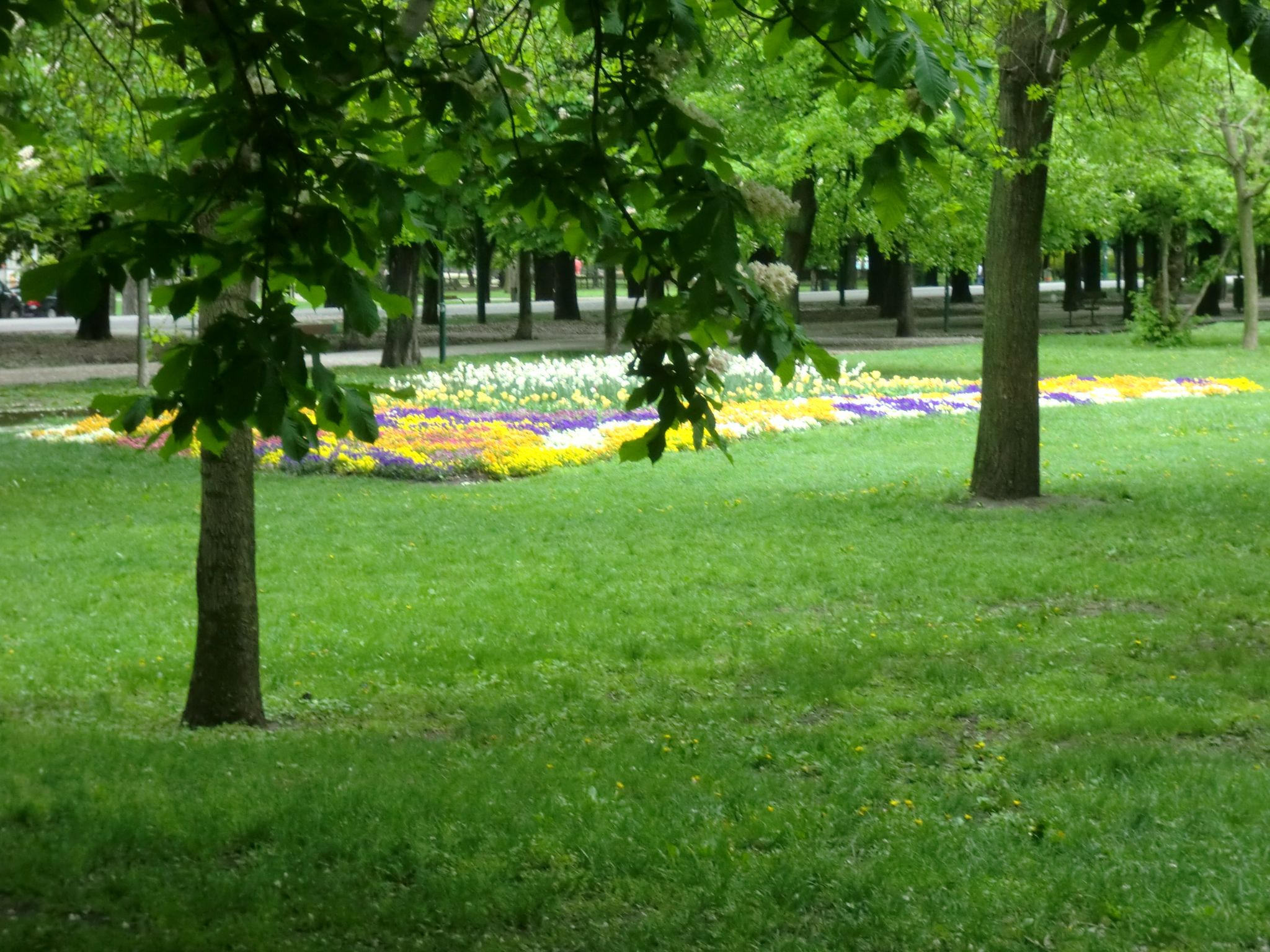 Vienna park 46 1440x1080 - Vienna: elegant beauty