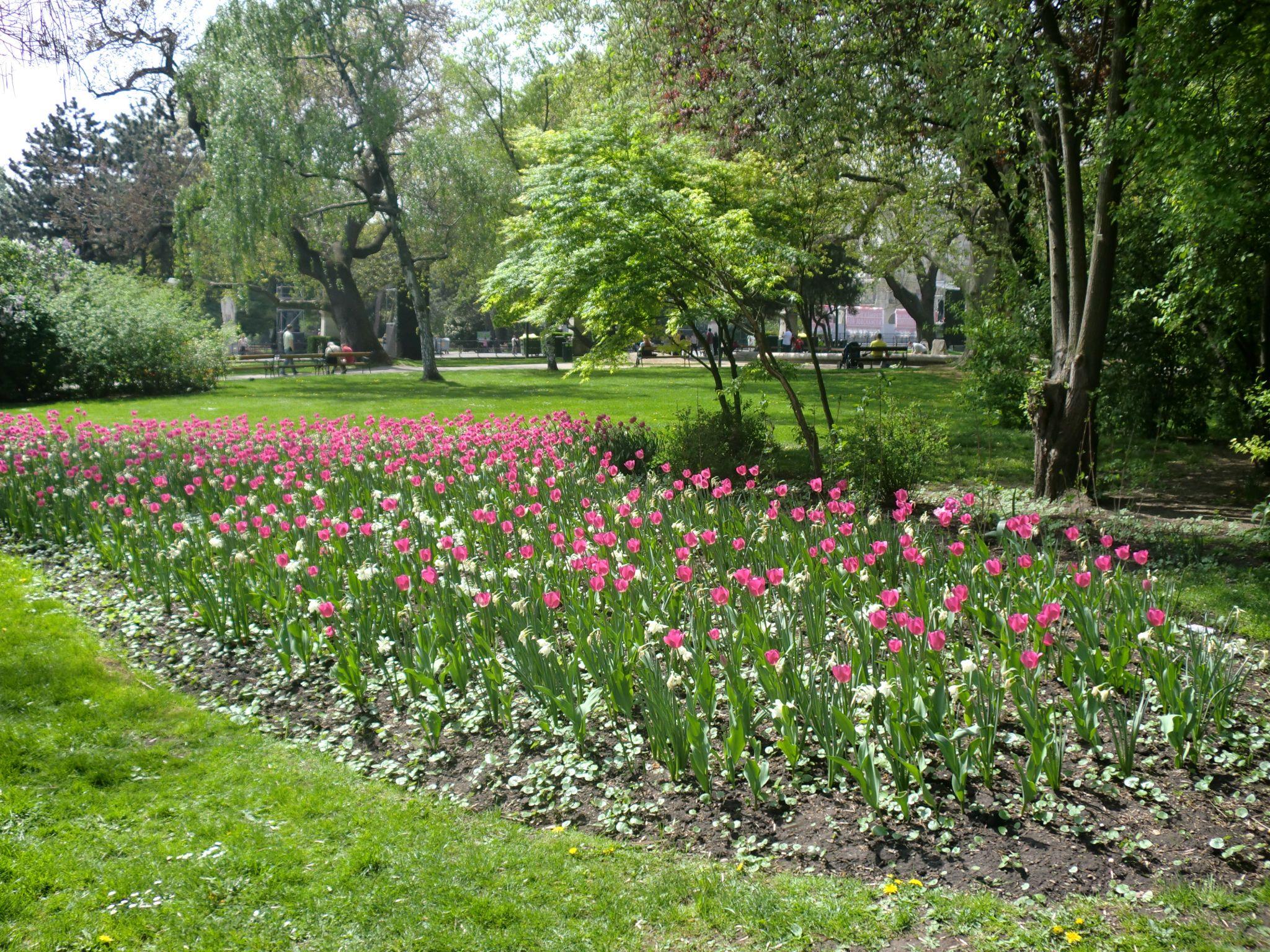 Vienna park 8 1440x1080 - Vienna: elegant beauty
