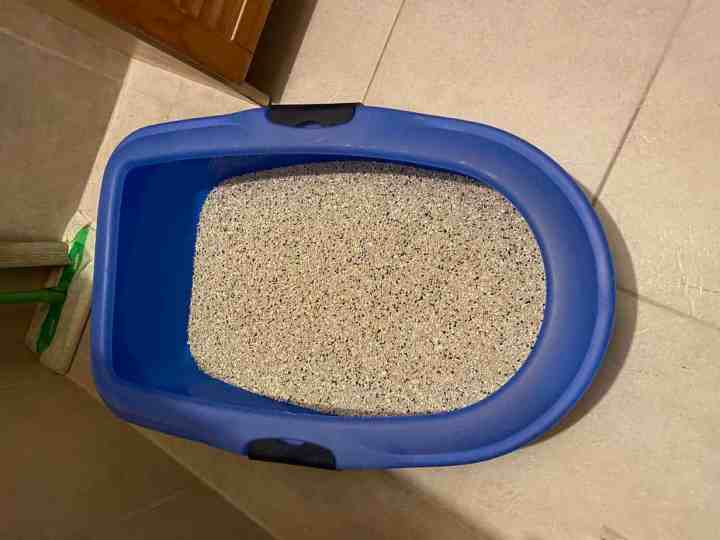 Cat toilet with sieve for effortless easy cleaning