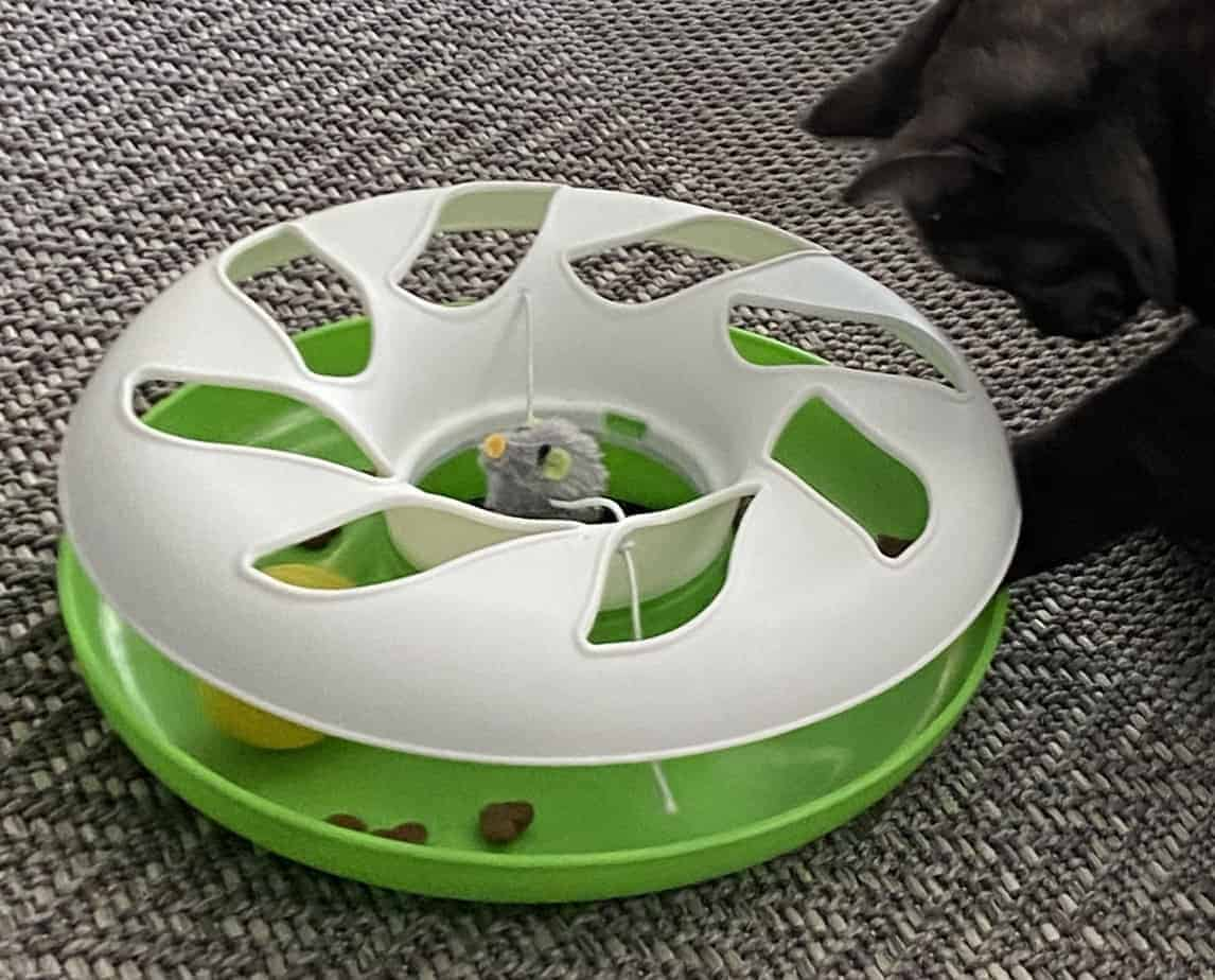 Cat Toys – Ball Track Game