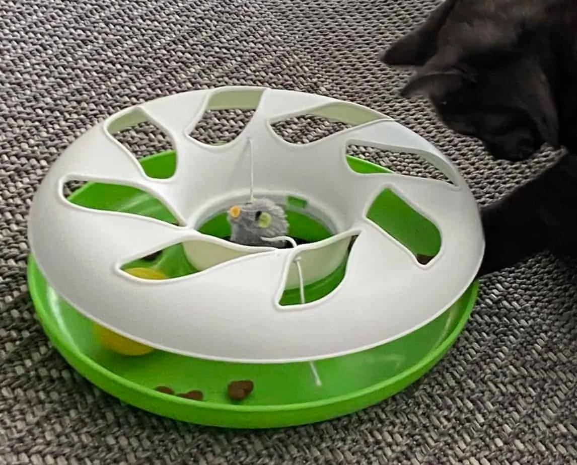 Cat Toys – Jeu de piste de balle